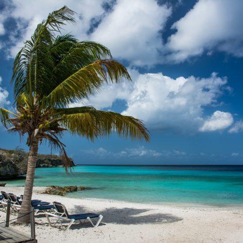 Zonvakantie op Curaçao (miniplanning)