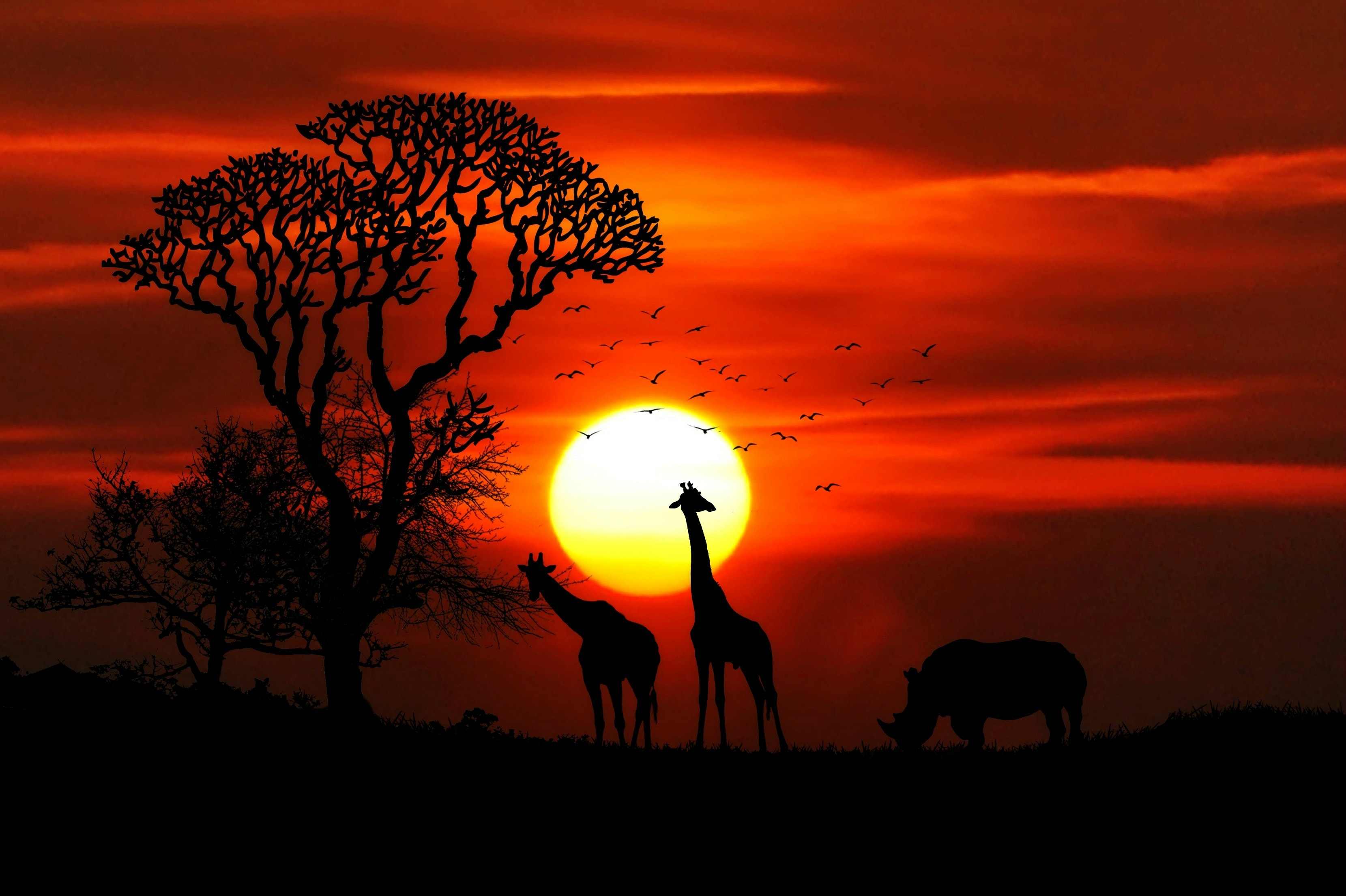 Waar moet je rekening mee houden als je naar Tanzania op vakantie gaat?